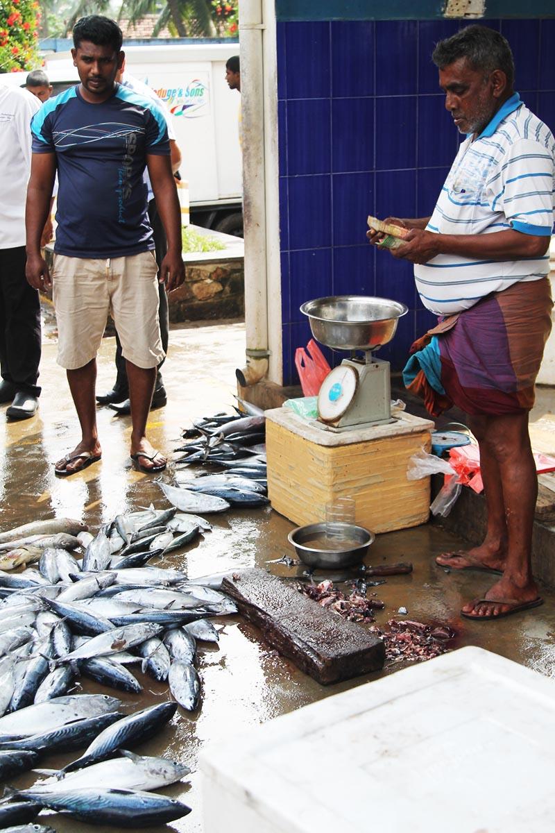 Fish market near Hikka Tranz